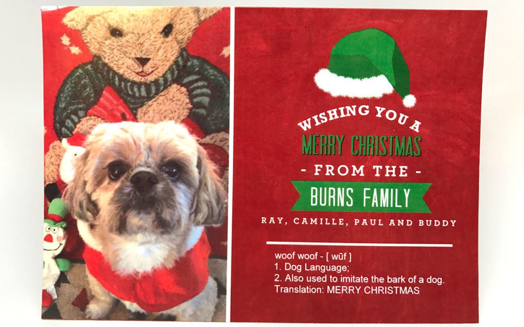 The Burns Family Christmas Card
